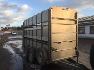 12x5x7 with decks suitable for horses